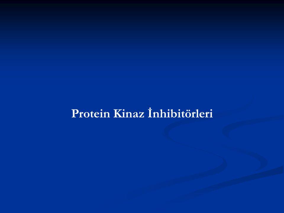 Protein Kinaz İnhibitörleri