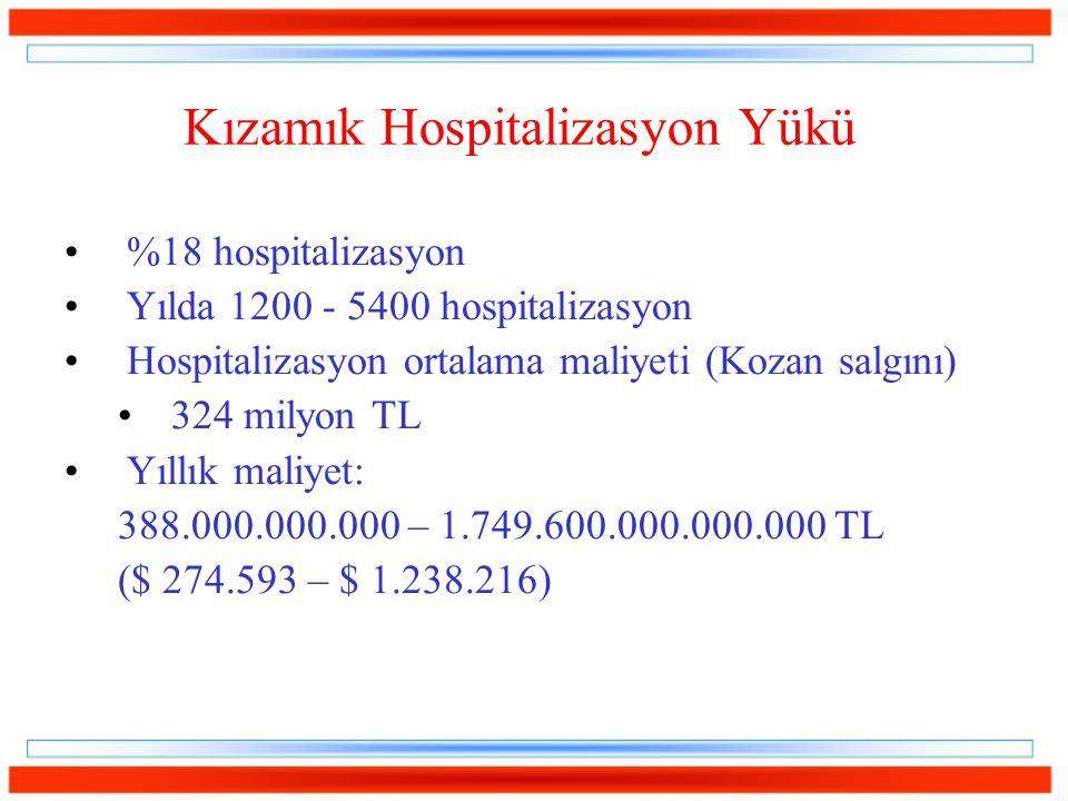Kızamık Hospitalizasyon Yükü