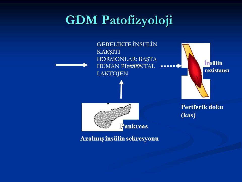 GDM Patofizyoloji Periferik doku (kas) Pankreas