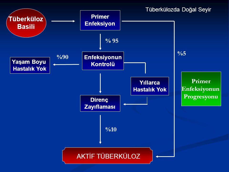 Tüberküloz Basili % 95 %5 %90 Primer Enfeksiyonun Progresyonu %10