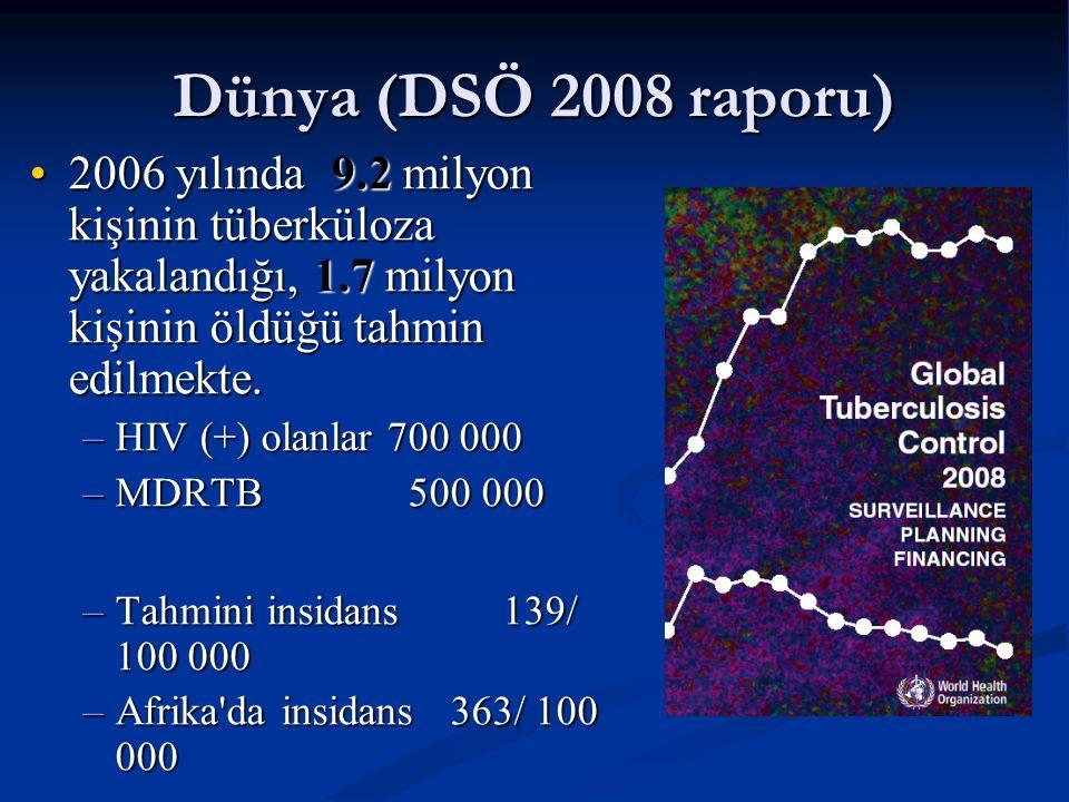 Dünya (DSÖ 2008 raporu) 2006 yılında 9.2 milyon kişinin tüberküloza yakalandığı, 1.7 milyon kişinin öldüğü tahmin edilmekte.