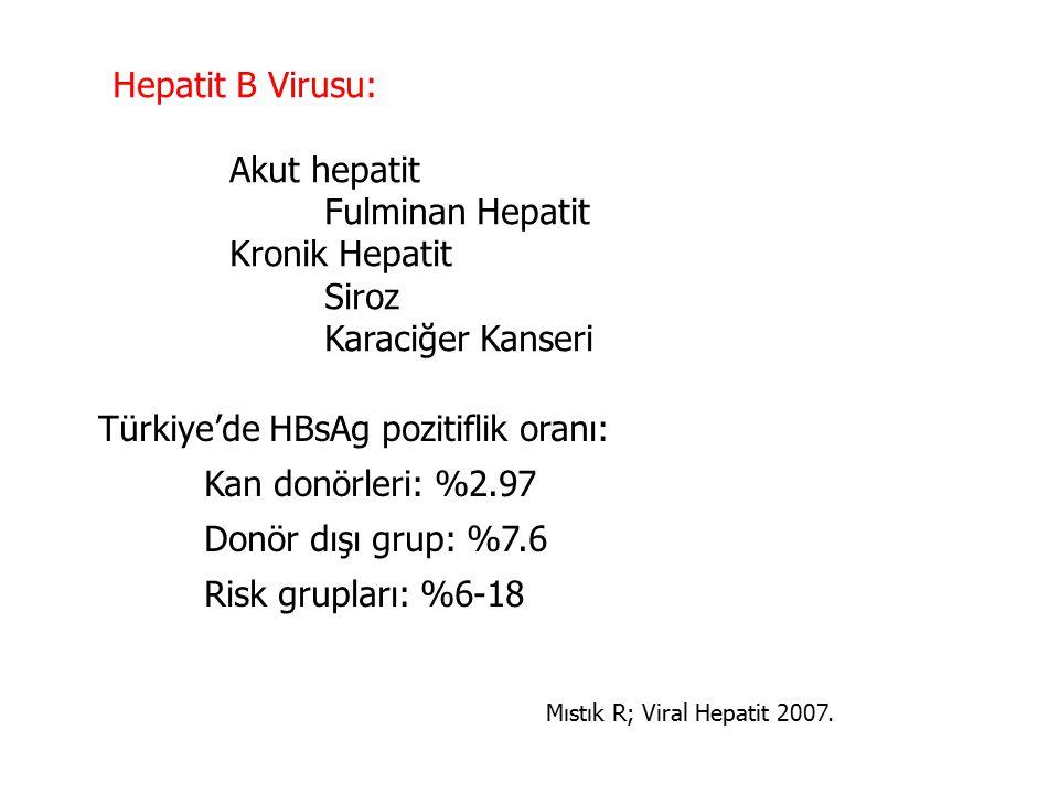 Türkiye'de HBsAg pozitiflik oranı: Kan donörleri: %2.97