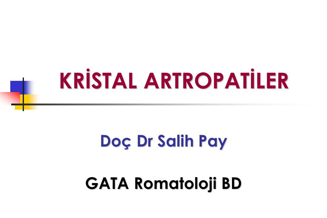 Doç Dr Salih Pay GATA Romatoloji BD