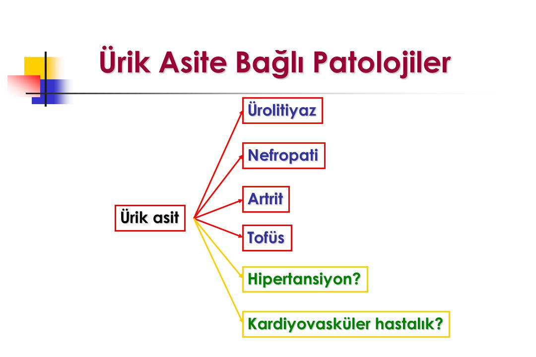 Ürik Asite Bağlı Patolojiler