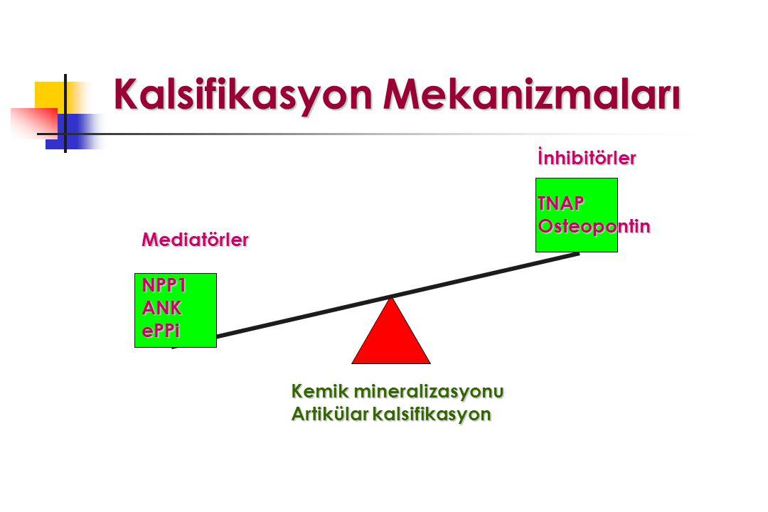 Kalsifikasyon Mekanizmaları