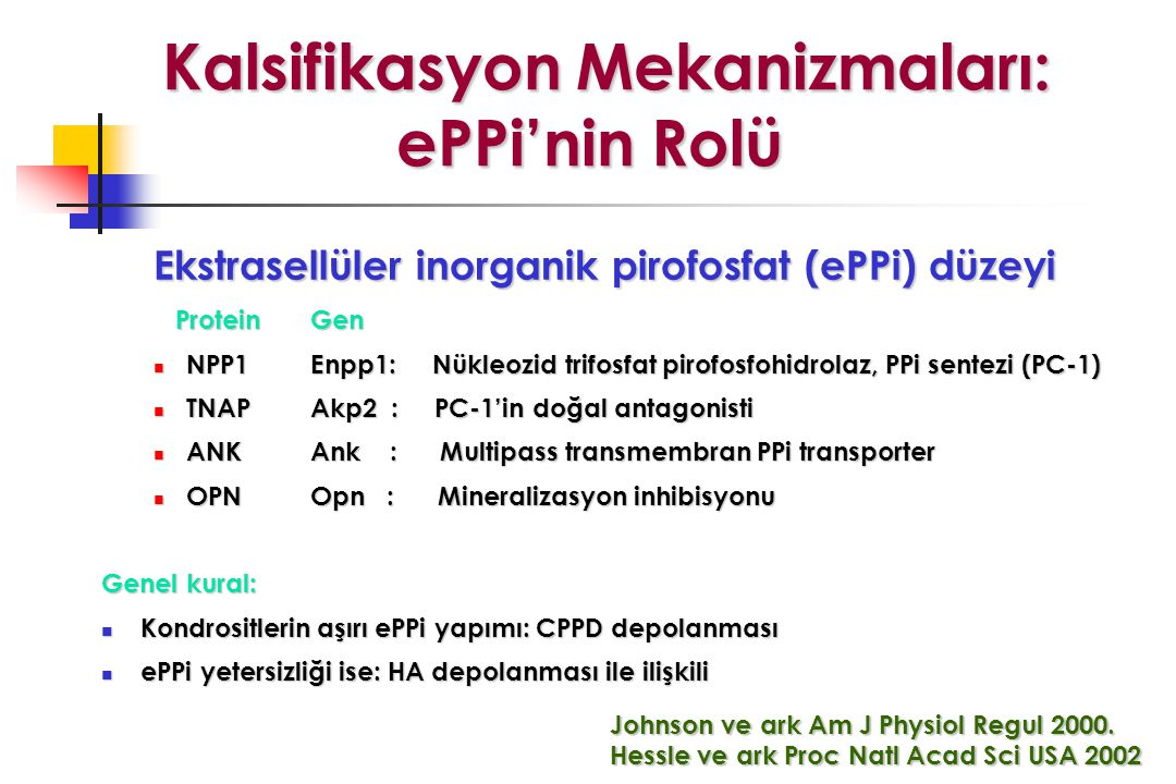 Kalsifikasyon Mekanizmaları: ePPi'nin Rolü
