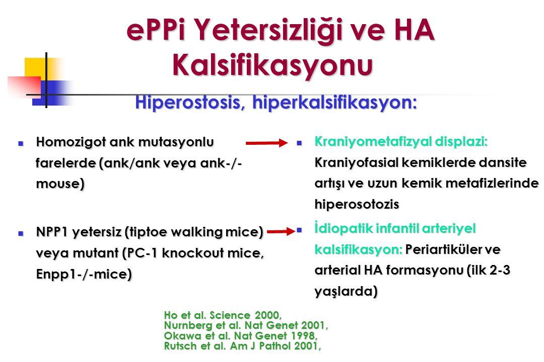 ePPi Yetersizliği ve HA Kalsifikasyonu