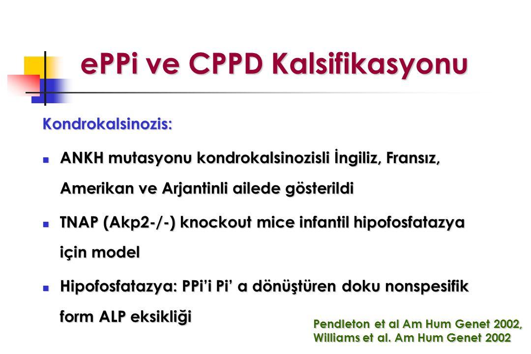 ePPi ve CPPD Kalsifikasyonu