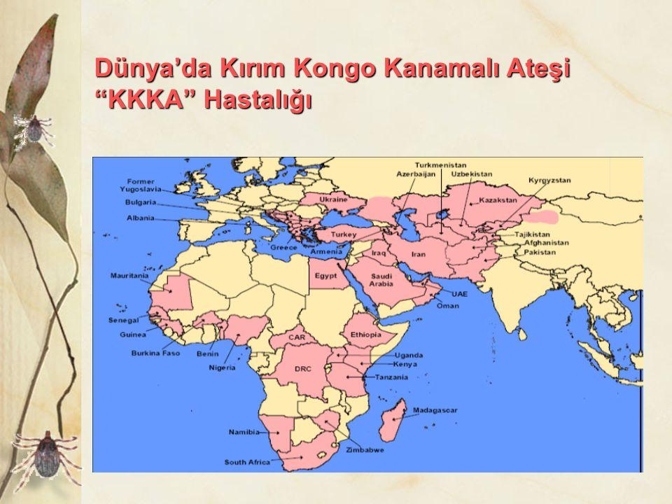 Dünya'da Kırım Kongo Kanamalı Ateşi KKKA Hastalığı