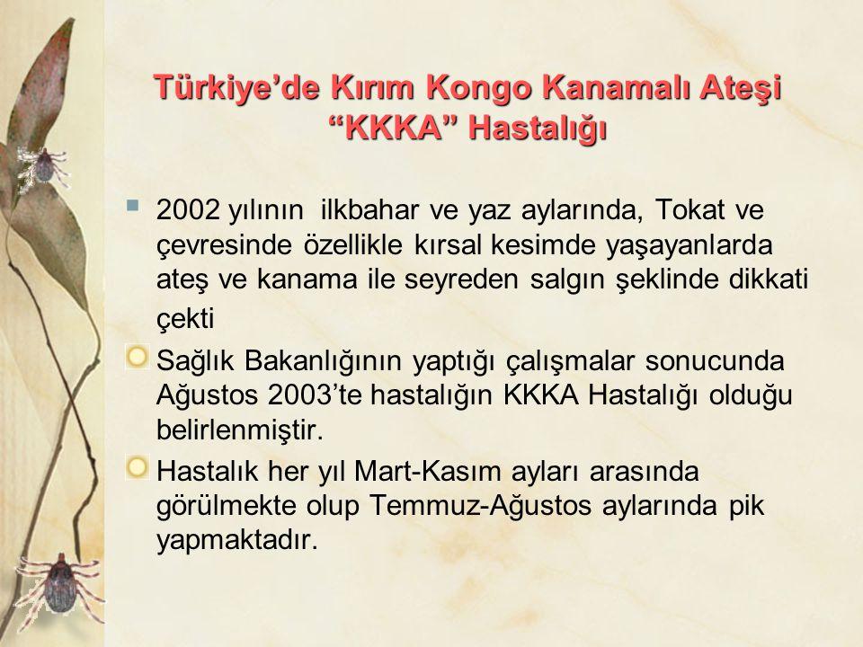 Türkiye'de Kırım Kongo Kanamalı Ateşi KKKA Hastalığı