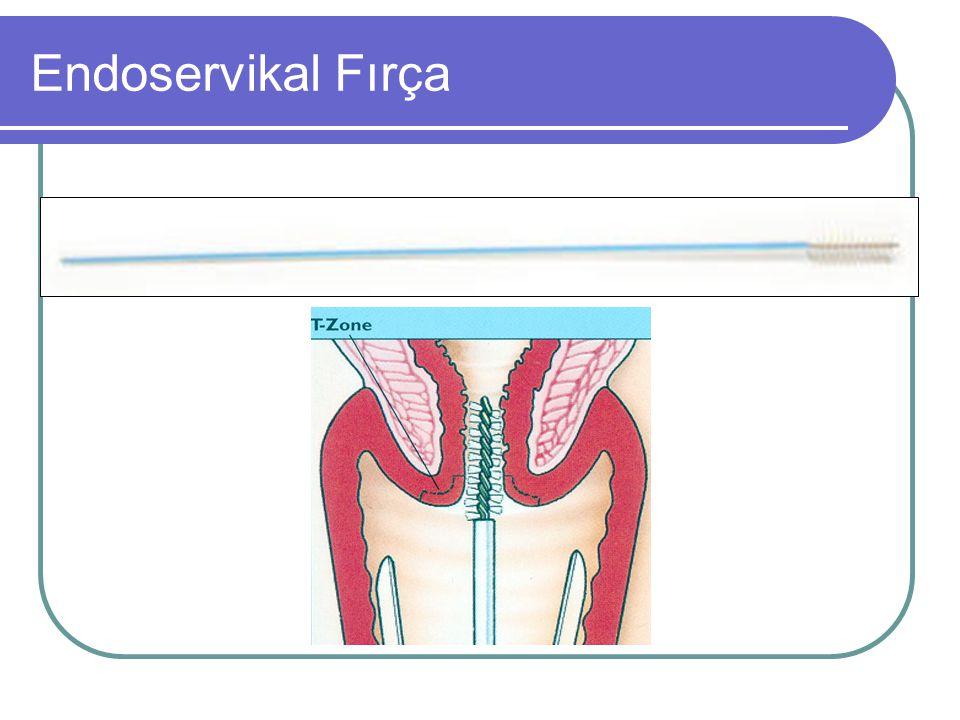 Endoservikal Fırça