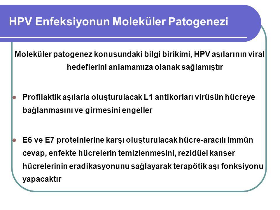 HPV Enfeksiyonun Moleküler Patogenezi