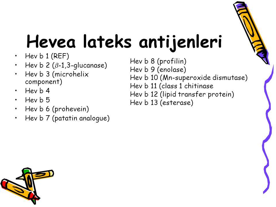 Hevea lateks antijenleri