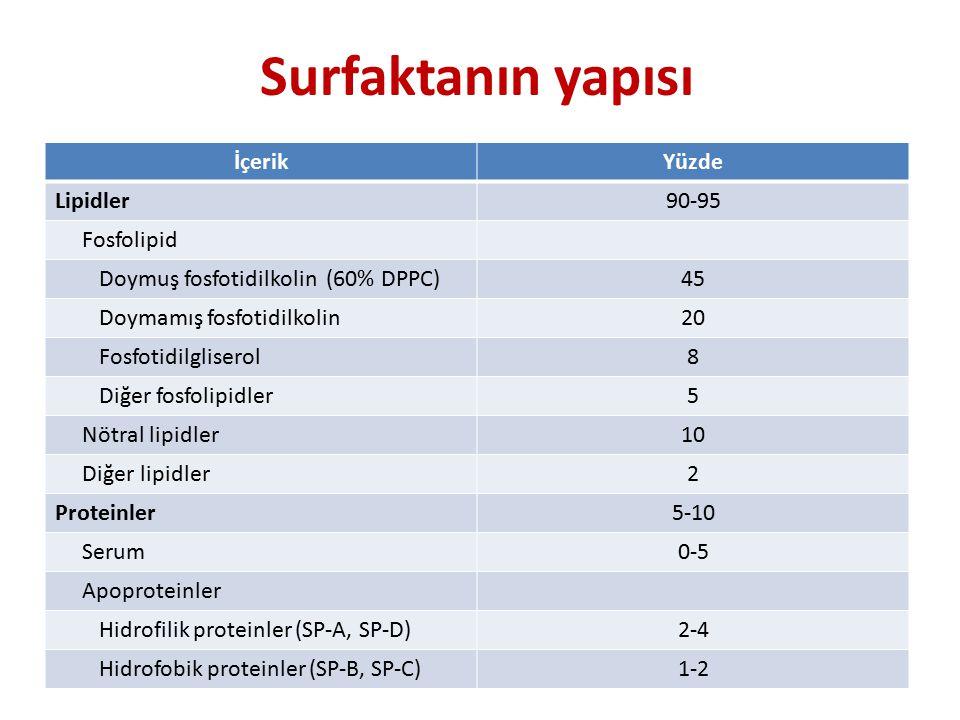 Surfaktanın yapısı İçerik Yüzde Lipidler 90-95 Fosfolipid