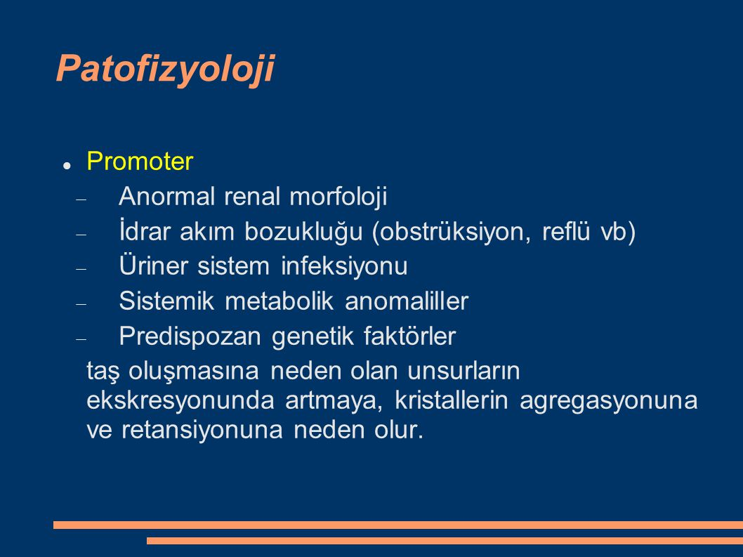 Patofizyoloji Promoter Anormal renal morfoloji