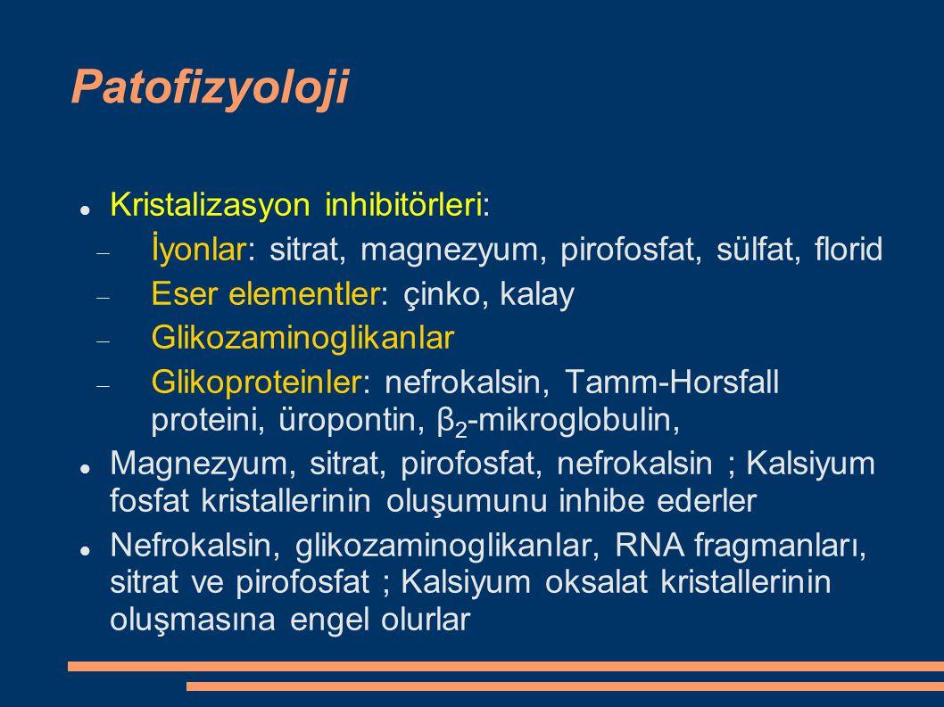 Patofizyoloji Kristalizasyon inhibitörleri: