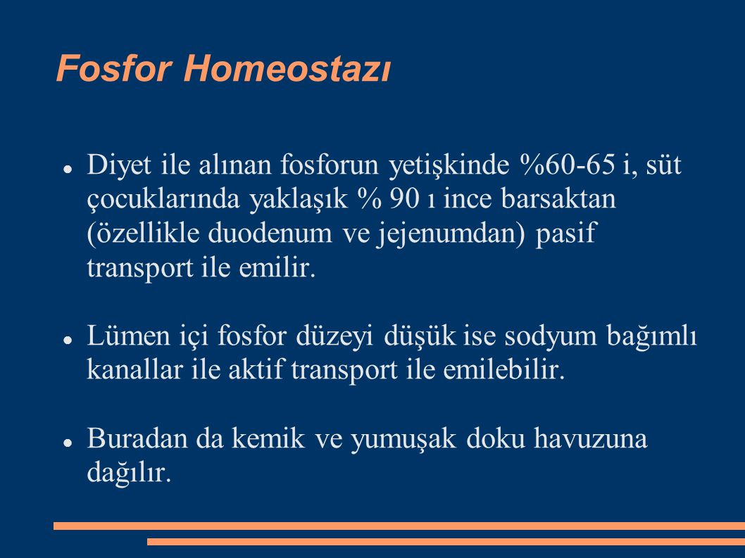 Fosfor Homeostazı