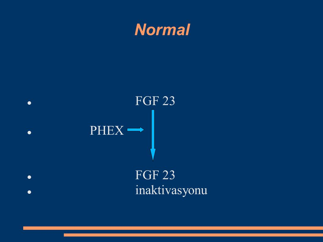Normal FGF 23 PHEX inaktivasyonu