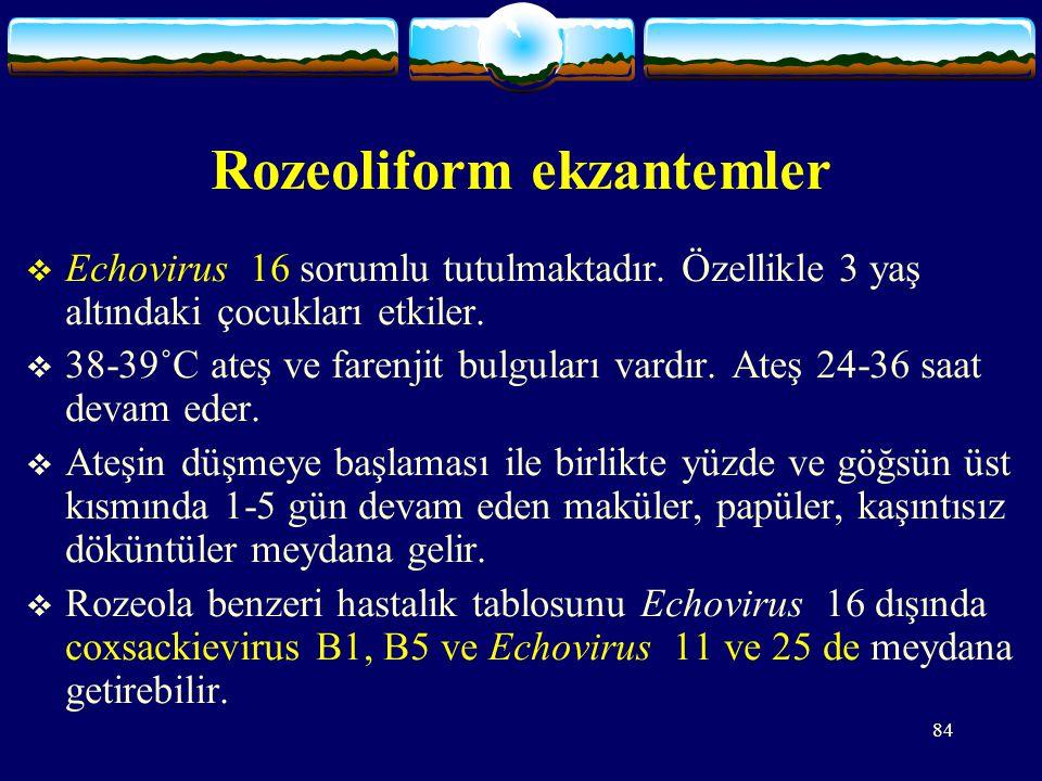 Rozeoliform ekzantemler