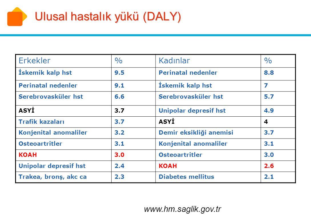 Ulusal hastalık yükü (DALY)