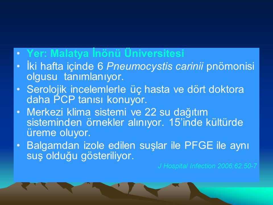 Yer: Malatya İnönü Üniversitesi