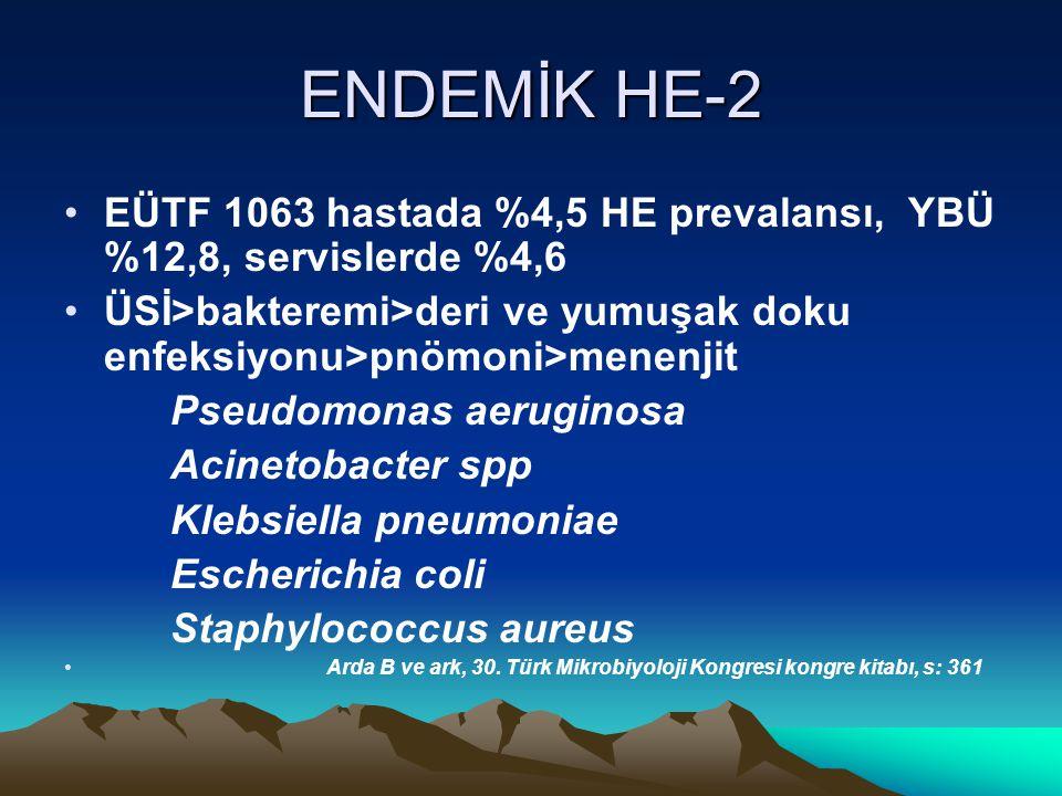 ENDEMİK HE-2 EÜTF 1063 hastada %4,5 HE prevalansı, YBÜ %12,8, servislerde %4,6. ÜSİ>bakteremi>deri ve yumuşak doku enfeksiyonu>pnömoni>menenjit.