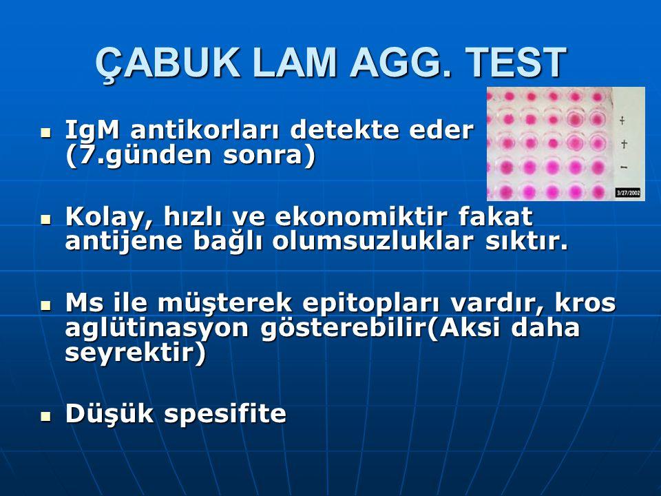 ÇABUK LAM AGG. TEST IgM antikorları detekte eder (7.günden sonra)