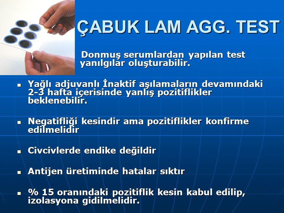 ÇABUK LAM AGG. TEST Donmuş serumlardan yapılan test yanılgılar oluşturabilir.