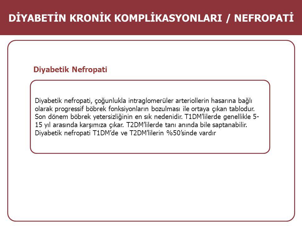 DİYABETİN KRONİK KOMPLİKASYONLARI / NEFROPATİ
