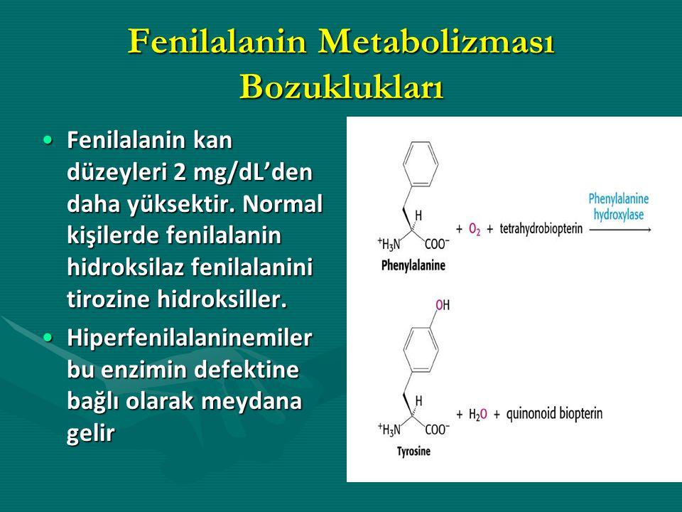 Fenilalanin Metabolizması Bozuklukları