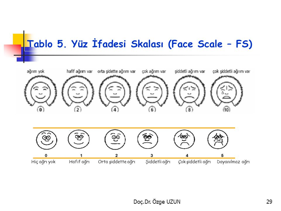 Tablo 5. Yüz İfadesi Skalası (Face Scale – FS)