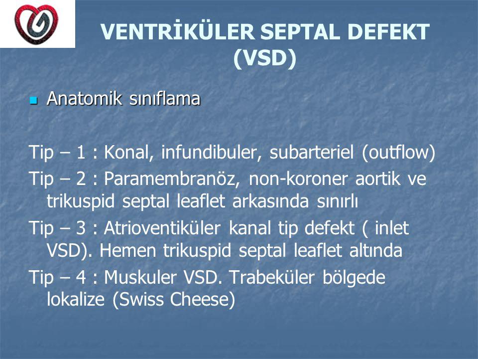 VENTRİKÜLER SEPTAL DEFEKT (VSD)