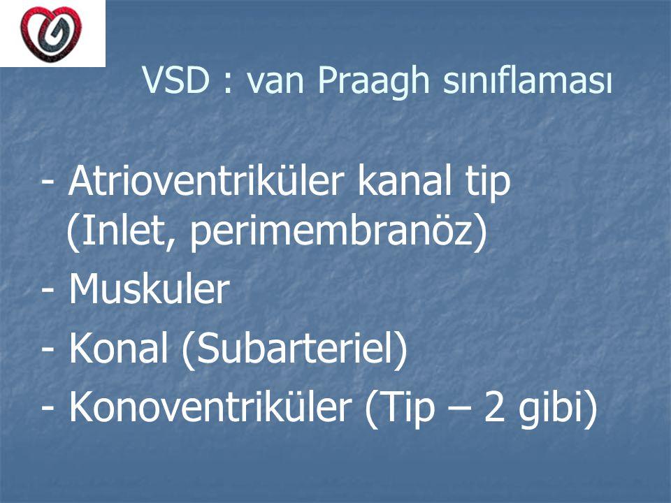 VSD : van Praagh sınıflaması