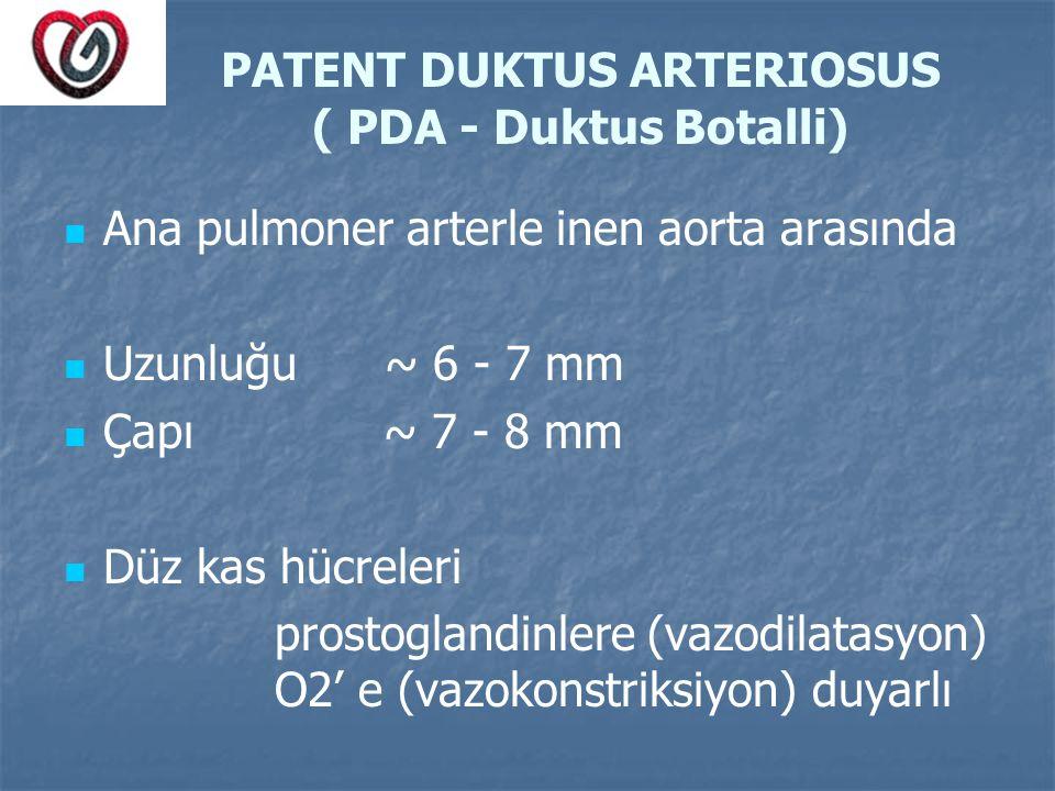 PATENT DUKTUS ARTERIOSUS ( PDA - Duktus Botalli)