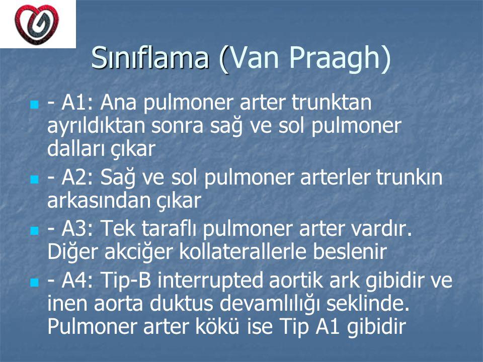 Sınıflama (Van Praagh)