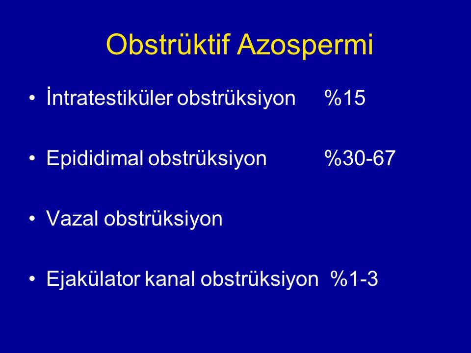 Obstrüktif Azospermi İntratestiküler obstrüksiyon %15