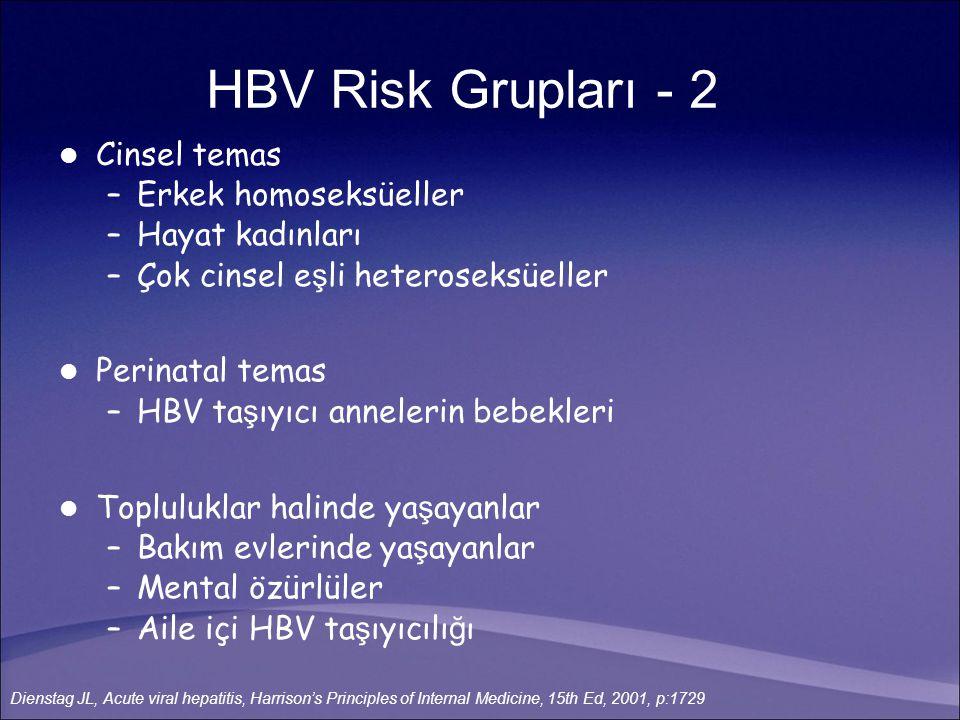 HBV Risk Grupları - 2 Cinsel temas Erkek homoseksüeller