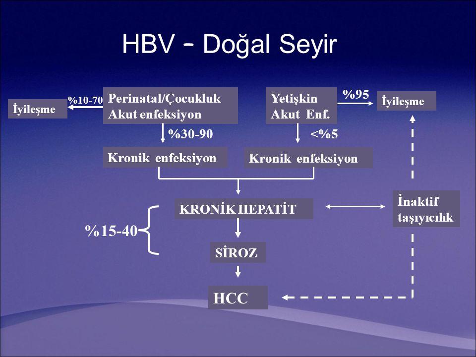 HBV – Doğal Seyir %15-40 HCC %95 Perinatal/Çocukluk Akut enfeksiyon