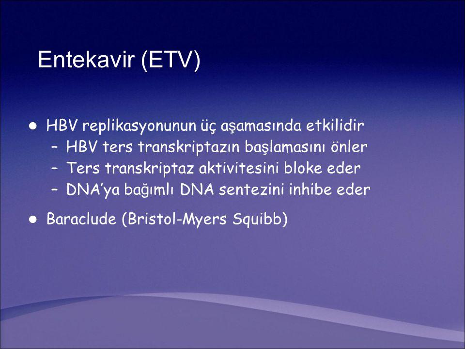 Entekavir (ETV) HBV replikasyonunun üç aşamasında etkilidir