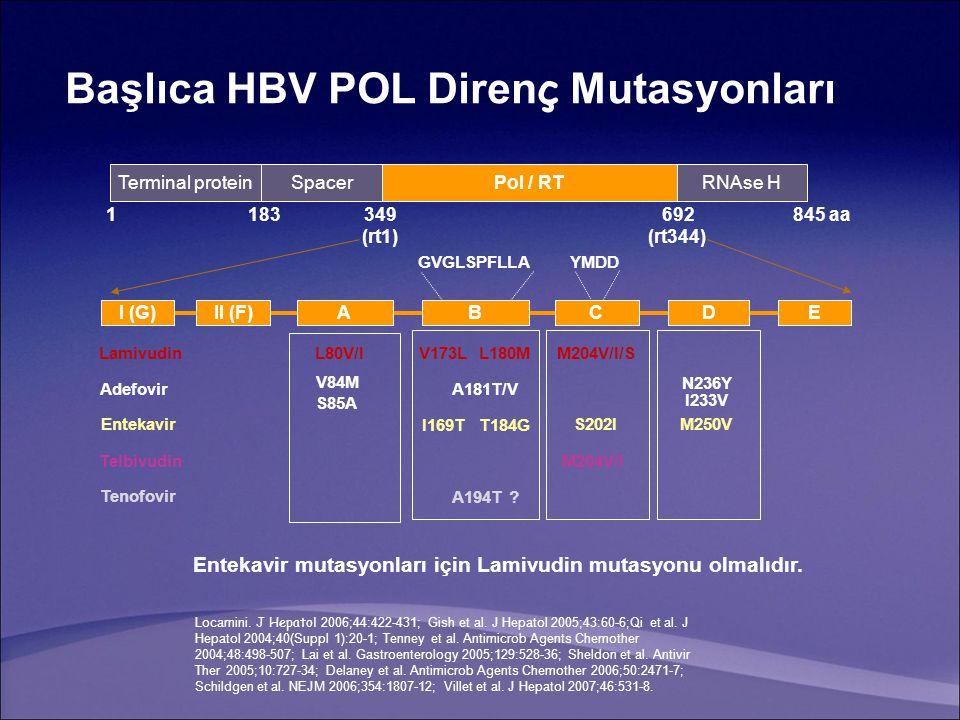 Başlıca HBV POL Direnç Mutasyonları