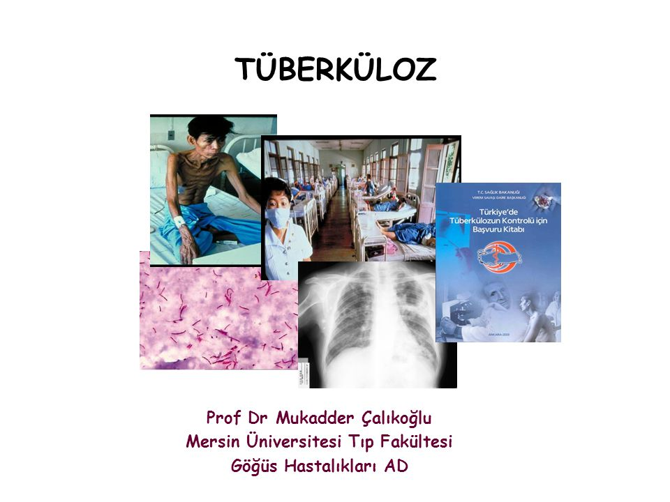Prof Dr Mukadder Çalıkoğlu Mersin Üniversitesi Tıp Fakültesi
