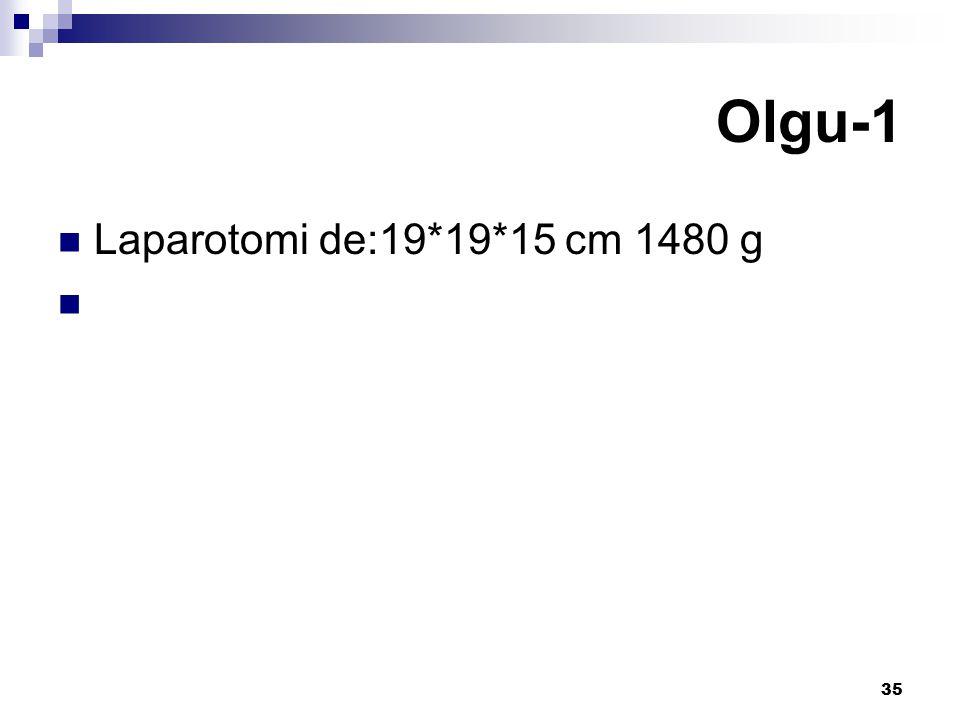 Olgu-1 Laparotomi de:19*19*15 cm 1480 g
