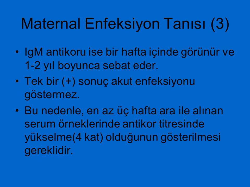 Maternal Enfeksiyon Tanısı (3)