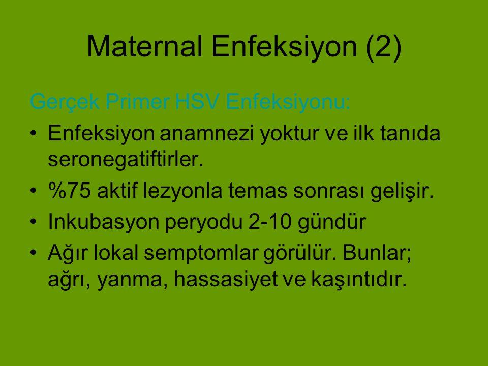 Maternal Enfeksiyon (2)