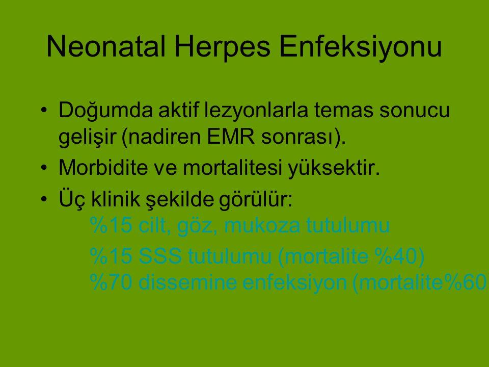 Neonatal Herpes Enfeksiyonu