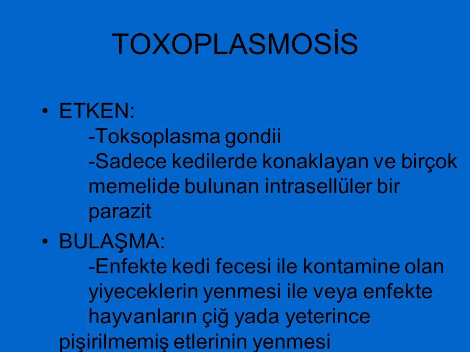 TOXOPLASMOSİS