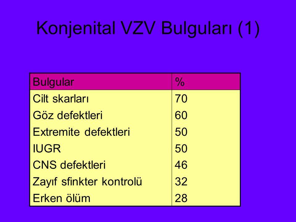 Konjenital VZV Bulguları (1)