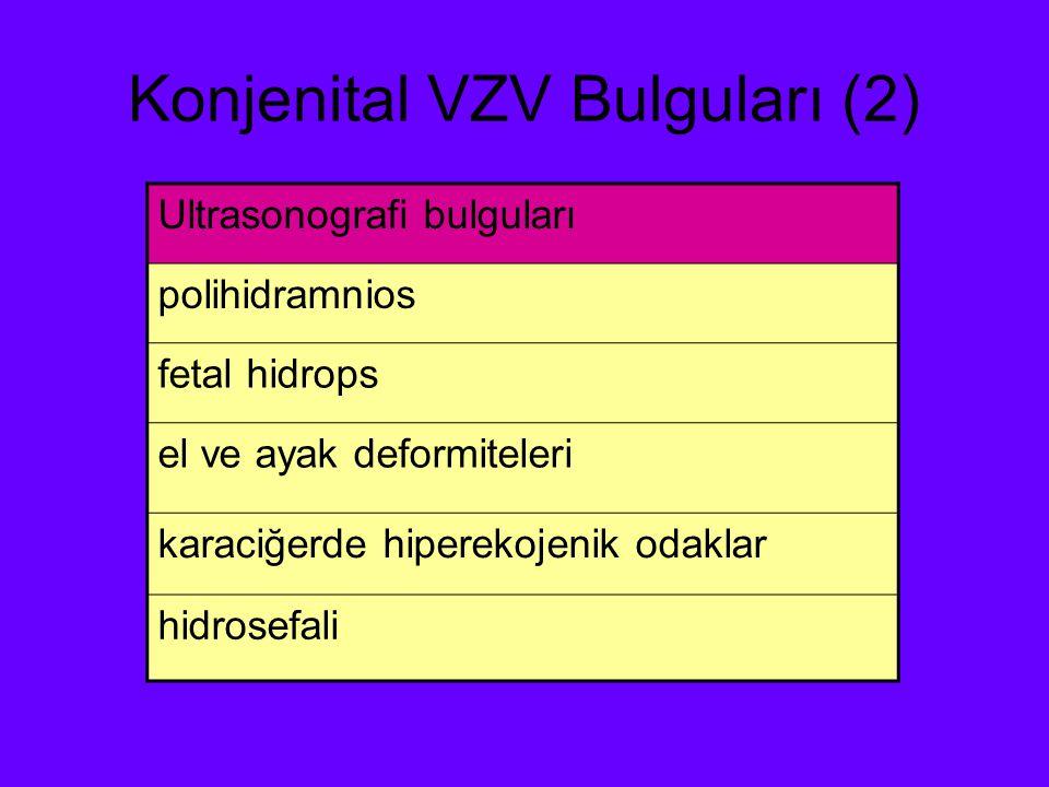 Konjenital VZV Bulguları (2)
