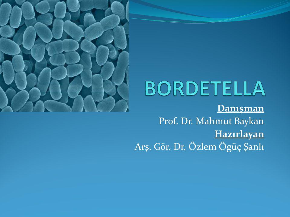BORDETELLA Danışman Prof. Dr. Mahmut Baykan Hazırlayan