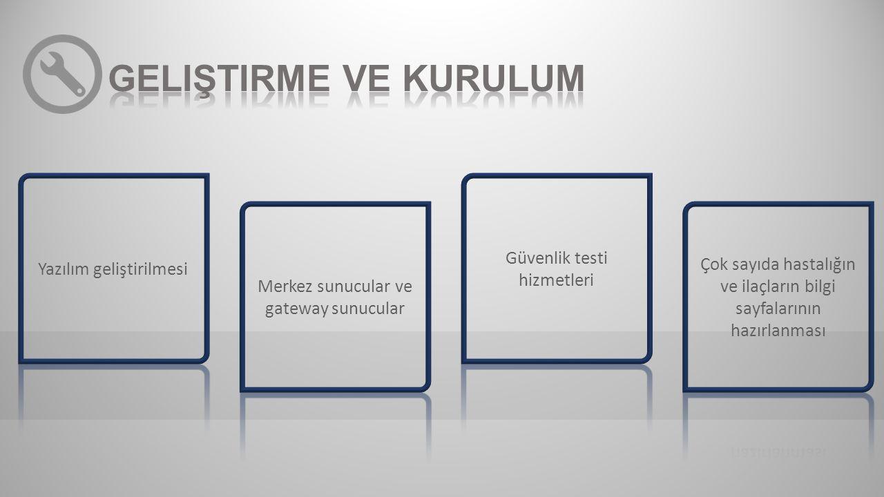 Geliştirme ve kurulum Güvenlik testi hizmetleri Yazılım geliştirilmesi